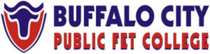 Buffalo City TVET College Application Requirements
