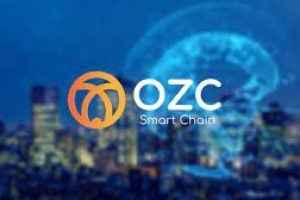 OZC Smart Chain Learnerships Programme   How to Apply