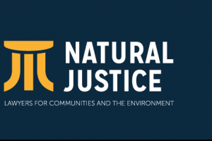 Natural Justice Indigenous Fellowship Program | How To Apply